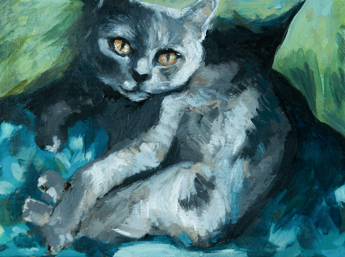 Portrait of willow the cat, by Laura Bonnie
