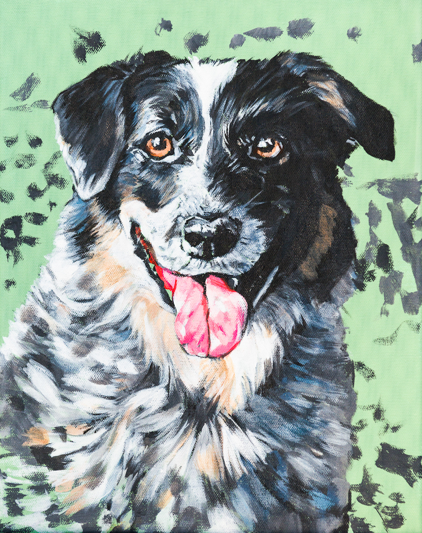 Poppy of North Park Bikes! Pet portrait by Laura Bonnie