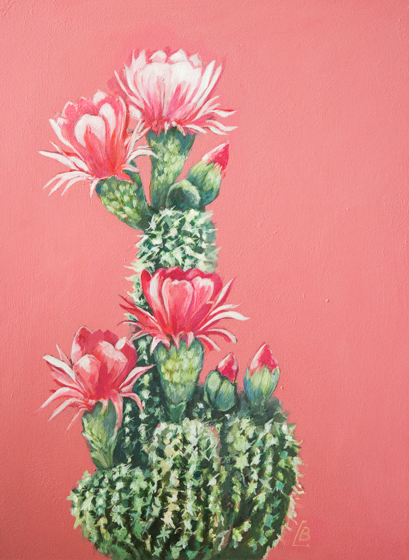 pink cactus, acrylic painting commission
