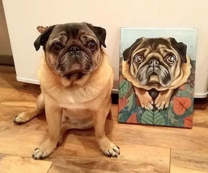 Dear pug meatball posing with his new pet portrait. North Park Art Studio